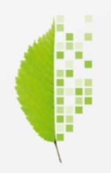 WEED bei Bits&Bäume-Konferenz in Berlin