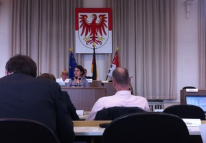 WEED-Expertin Veselina Vasileva bei der Anhörung